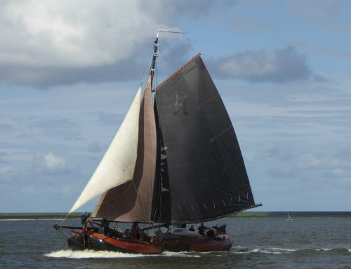 Veel en bijzondere schepen naar Bolsward