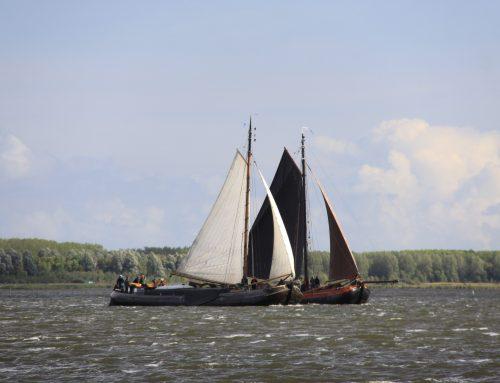 Zeil mee om de Garnalencup: 21 september, Lauwersmeer